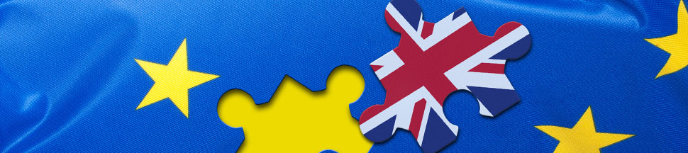 Brexit: What Does this Mean for Supply Chain Professionals?