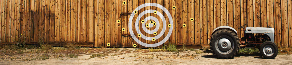 When Being Smart Isn't Good Enough: Texas Sharpshooter Fallacy and Seeing Patterns in Data